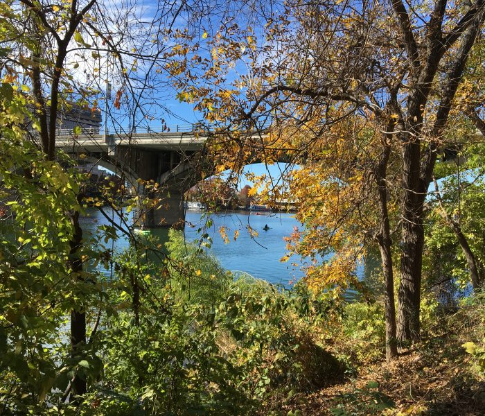 Photos from Lady Bird Lake YRE on Nov 25th